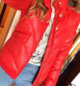 Куртка Adidas(original)