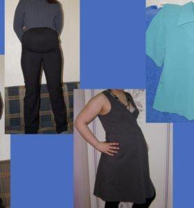 Пакет одежды для беременных, 44-48.