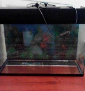 Продам аквариум объем 60 л