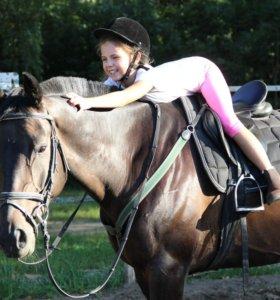 Верховая езда конный спорт 5 мин от метро