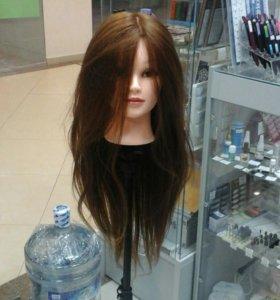 голова с натуральными волосами