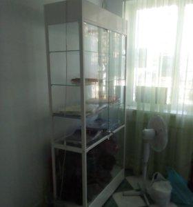 Шкаф стеклянный (витрина)