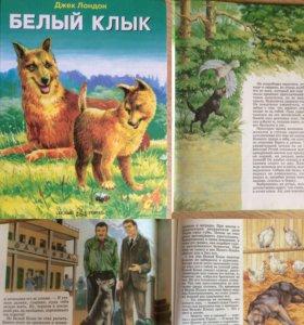 Красочные книги для детей