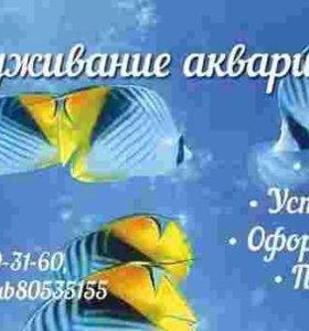 Обслуживание(чистка) аквариума