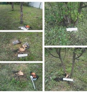 Спил деревьев , уход за садом