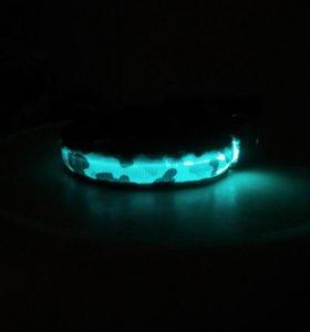 Светящийся LED ошейник для собаки/кошки.