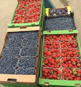 Доставка фруктов, ягод, в том числе экзотика.