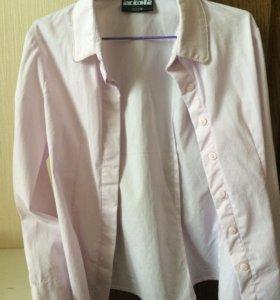Рубашка 122 acoola