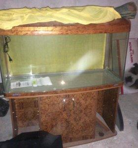 Продаю аквариум новый
