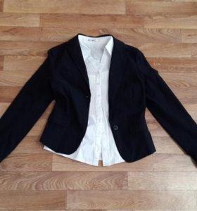 Плащ пиджак рубашка