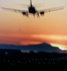 Грузовые авиаперевозки от 1 кг за 24 часа