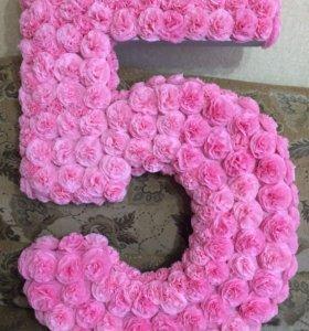 Цыфра 5