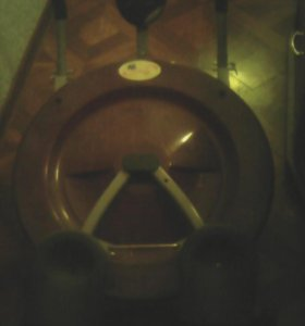Тренажер дисковый