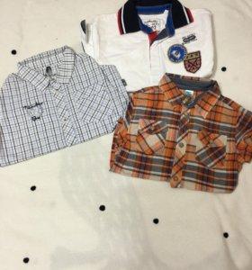 Рубашки и толстовки