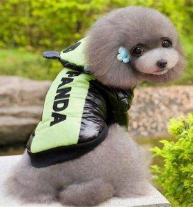 Новая курточка для собачки