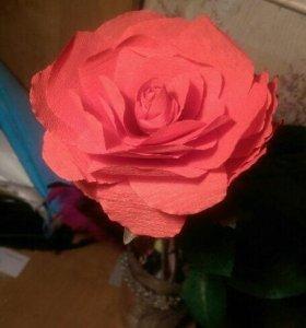 Топиарии / бумажные цветы