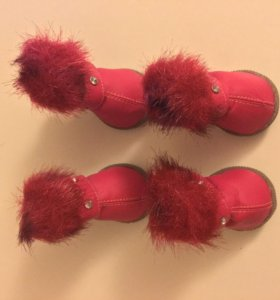 Обувь для собаки - зимняя