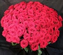 Розы. Доставка цветов.