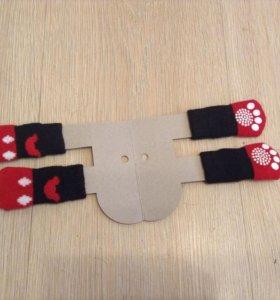 Носки. Носочки для собак или кошек