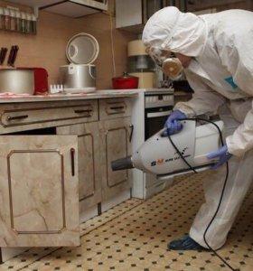 Качественная  санитарная обработка