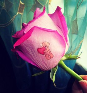 Наклейки на цветы