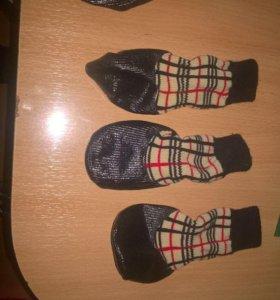 Носочки для собак.