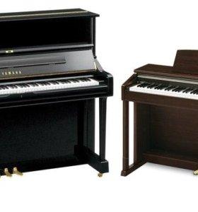 Пианино цифровое/акустическое, фортепиано