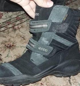 Ботинки демиснзонные