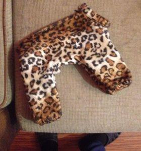 Тёплая одежда для собак