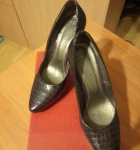 Туфли Calipso нат.кожа