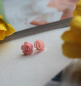 Гвоздики цветы