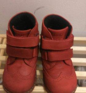 Ботинки детские Раббит, 21 размер
