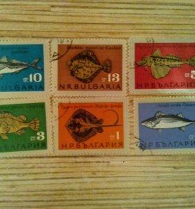 Марки Болгарии рыбы