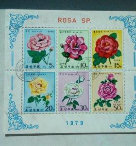 Марки Северной Кореи 1979 розы