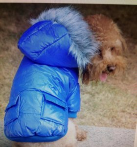 Куртка на собаку утепленная