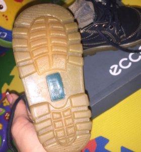 Ботинок кожа  chipmunks