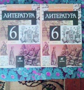 Христоматия по литературе 6 класс