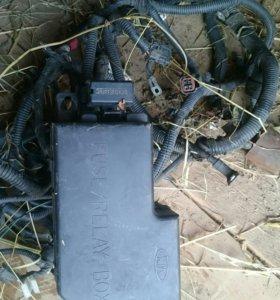 Блок предохронов на kia Rio 2