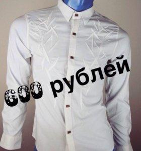 Подростковые рубашки D&G