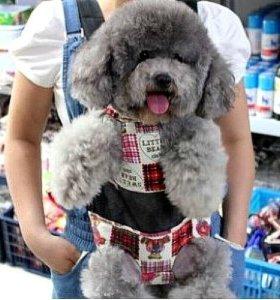 Рюкзак-переноска для собак