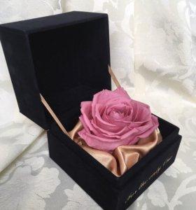 Эксклюзивный цветочный подарок