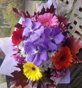 Цветы в Кузьмолово