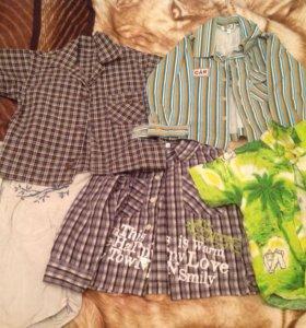 Рубашки на мальчика 2 года