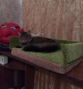 Собачьи и кошачьи диванчики,лежаночки..