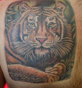 Татуировки,татуаж(перманентный макияж),пирсинг