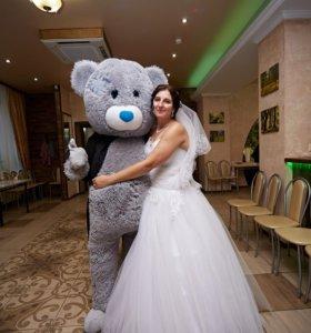 Мишка Тедди на свадьбу