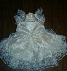 Праздничное платье для собачки