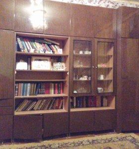 Мебельный гарнитур( стенка)