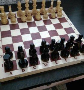 Шахматы турнирные.