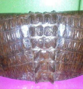 Сумка из натуральной крокодиловой кожи.